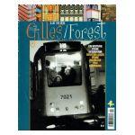La Collection des Villages de Bruxelles : Saint-Gilles, Forest