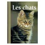 Les Chats - Guide complet