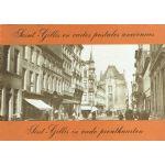 Saint-Gilles en cartes postales anciennes / Sint-Gillis in oude prentkaarten